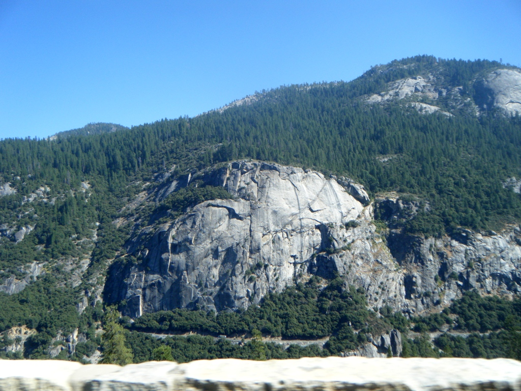 big oak flat mature dating site Big oak flat facilities ea   allowing the more mature trees to survive fires yosemite's fire management seeks opportunities to conduct prescribed burns in .